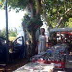 Markt in Viens